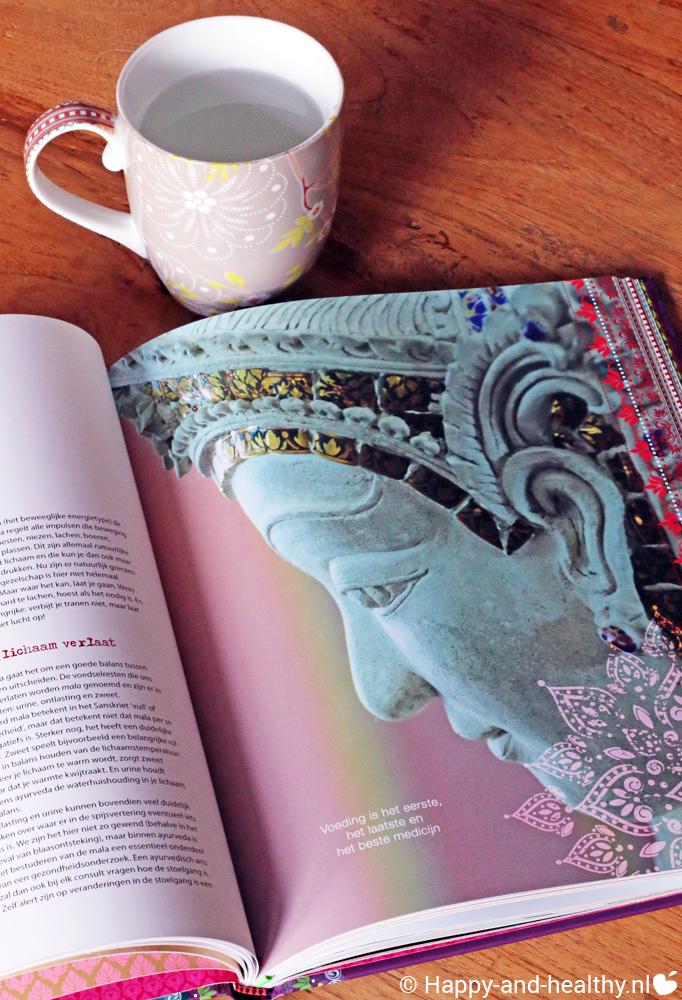 Happinez Ayurveda, boek review