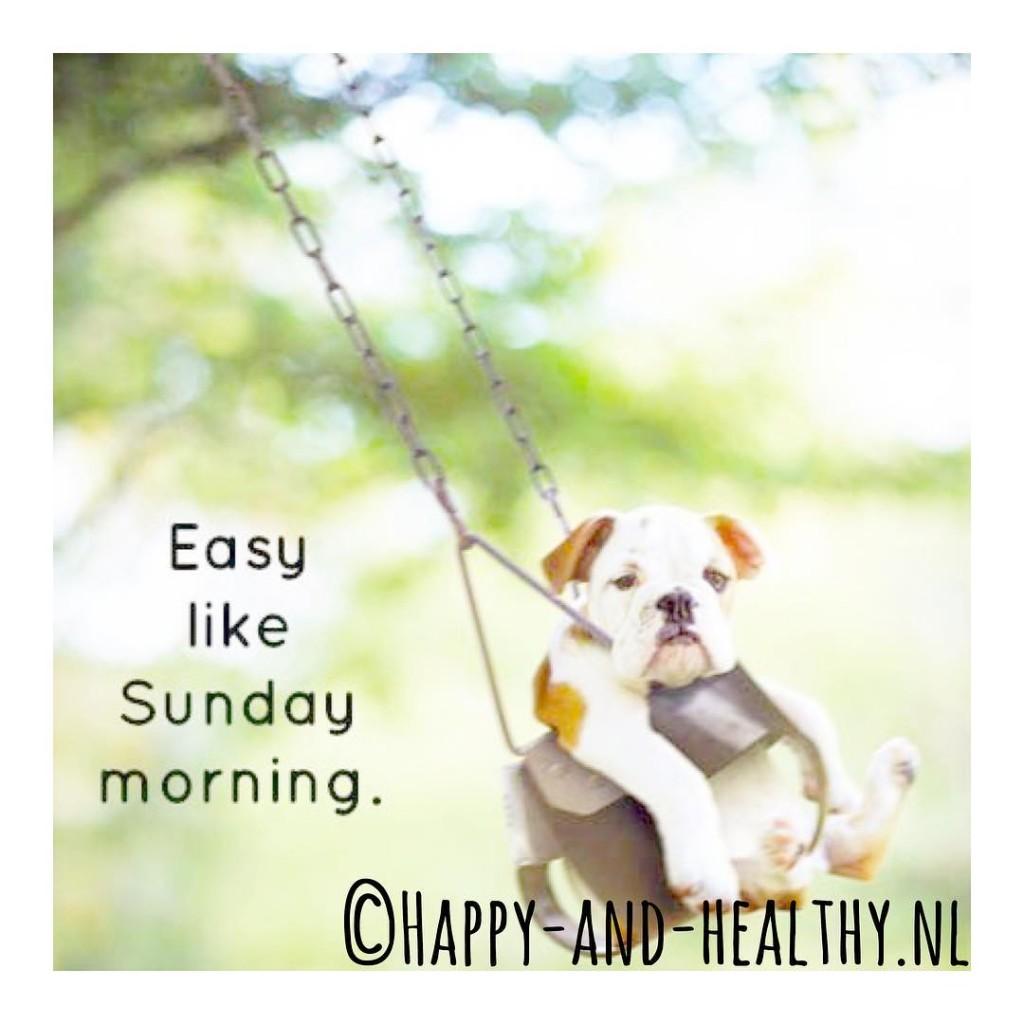 Happy sunday!  happy sunday happyhealthynl blij nostress chill zenhellip